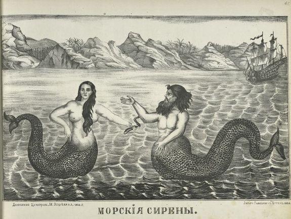 mermaidmen