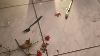 wine-glass-and-red-flowers-fall-on-the-floor-fragments