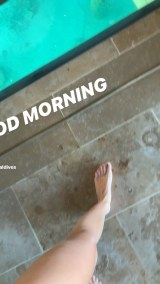 floortoe